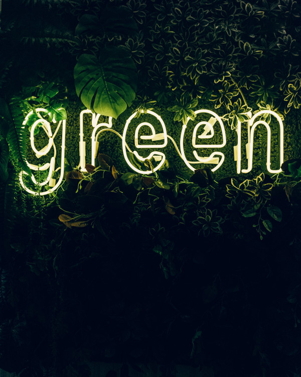 How does 'going green' affect businesses?